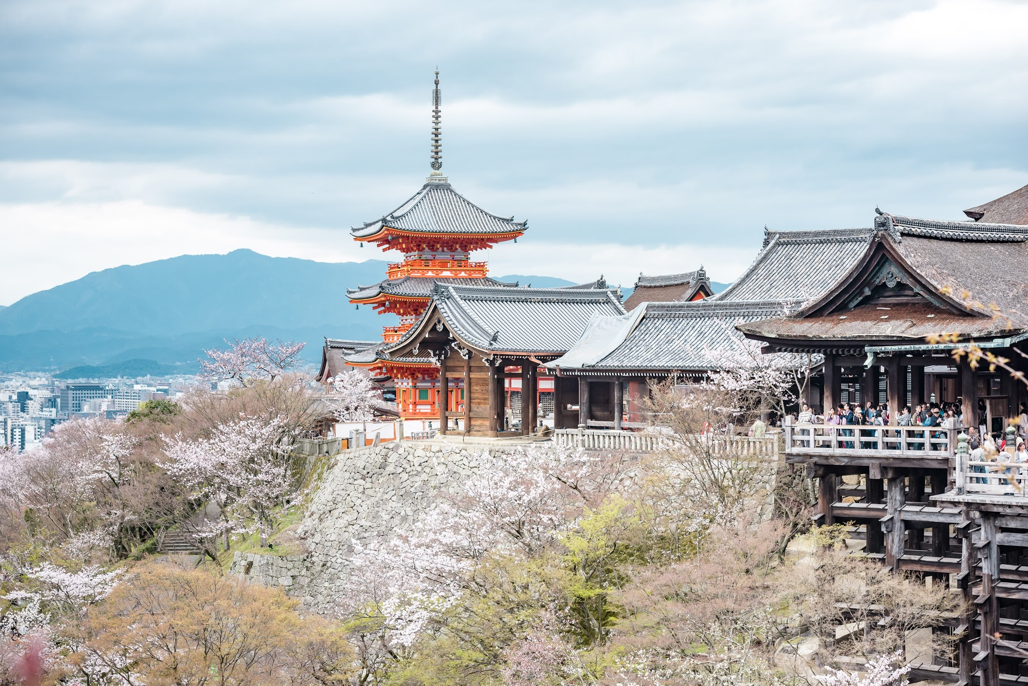First Time in Japan: Where To Go And What To Do | Tokyo Creative