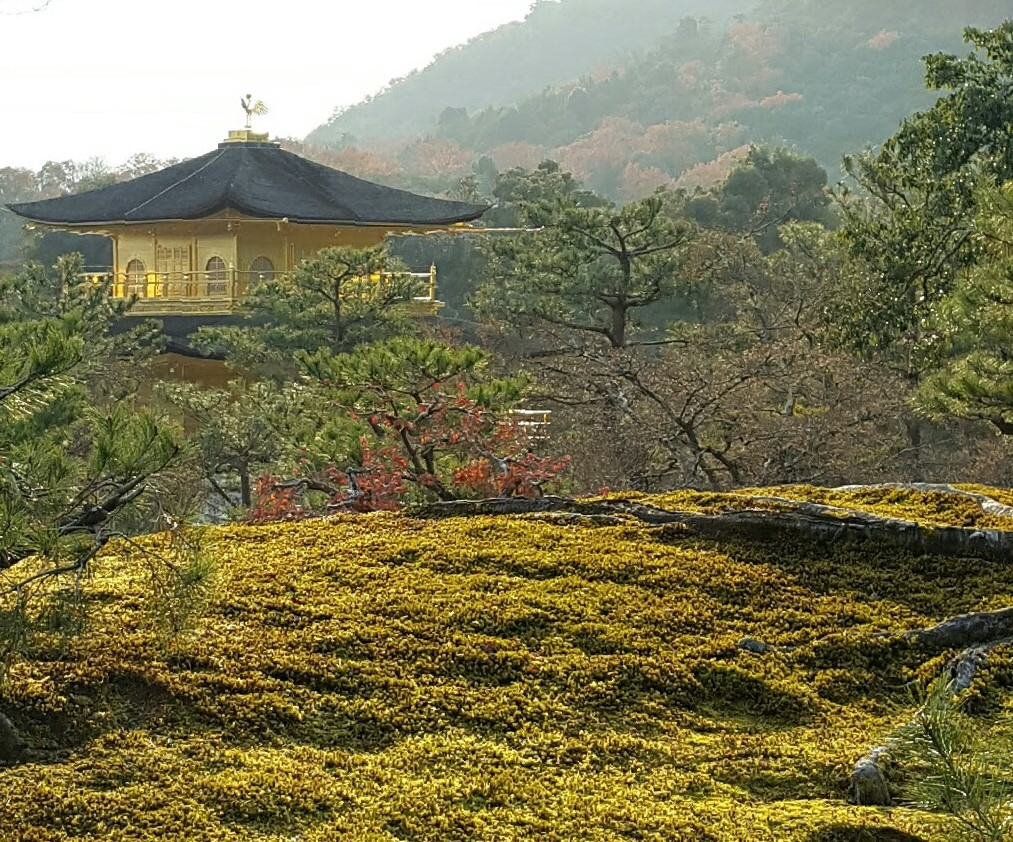 A guide to all of Kyoto\'s UNESCO world heritage sites | Odigo